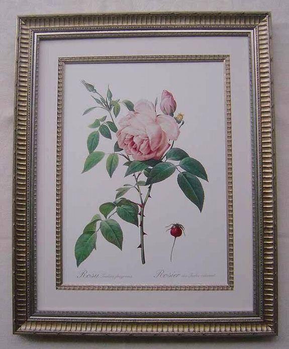 ルドゥテのバラの額絵
